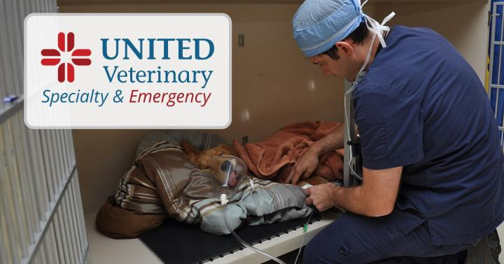 United Veterinary Specialty & Emergency