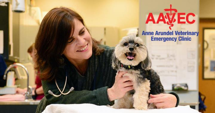 Anne Arundel Veterinary Emergency Clinic