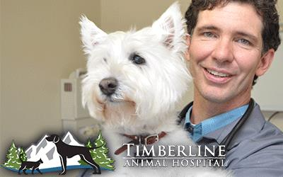 Timberline Animal Hospital