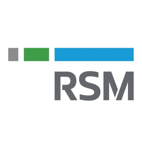RSM Mc Gladrey Inc