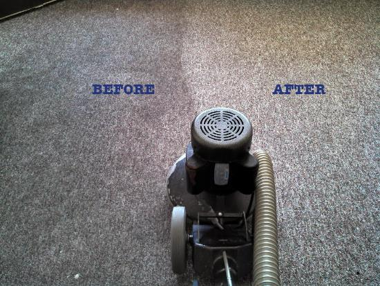 Sunshine Carpet & Floor Cleaning